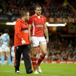 Wales v Argentina - Jamie Roberts of Wales leaves the field with team doctor Geoff Davies